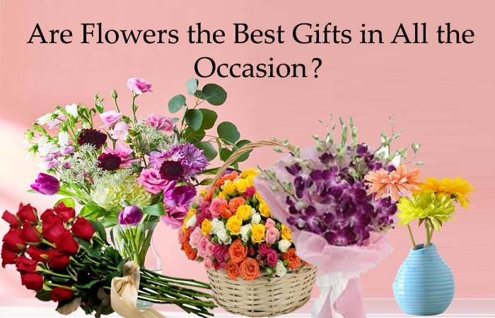 Are Flowers the Best Gifts in All the Occasion?