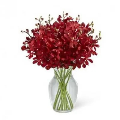 Red Orchid Vase