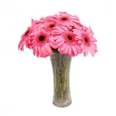 Send Pink Gerbera Vase Online In India Same Day Delivery