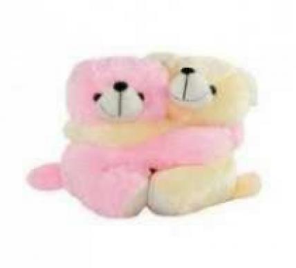 Hugging Teddy Bear